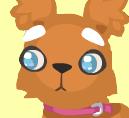 Dog head 4