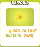 File:Daffodil.jpg