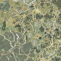 Thumbnail for version as of 01:48, September 7, 2005