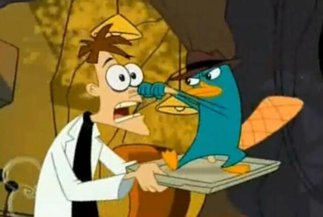 File:Perry goes for the nose.jpg