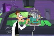 Perry bites doof
