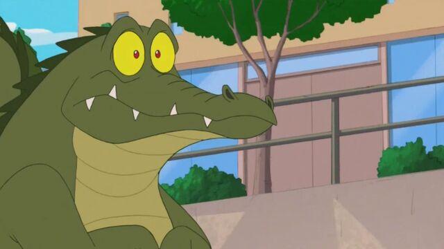 File:Surprised Crocodile.jpg