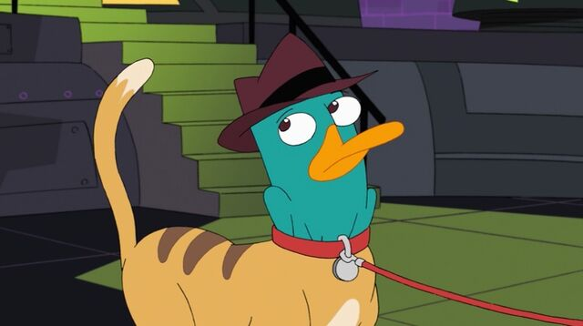 File:Agent P - cat suit.jpg