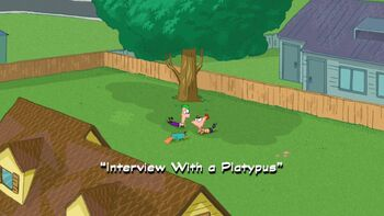 Interview With a Platypus title card