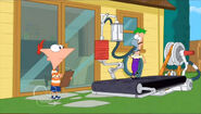 Ferb on Treadmill