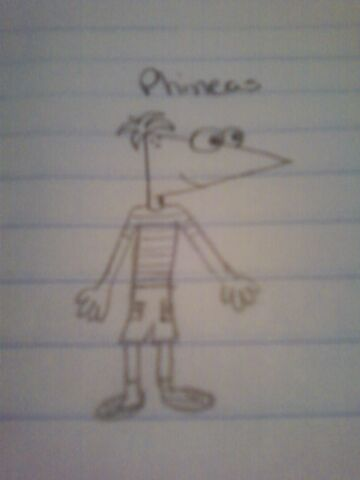 File:My Phineas Drawing.jpg