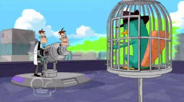 File:Shooting Perry.JPG