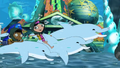Dolphin Ride Atlantis
