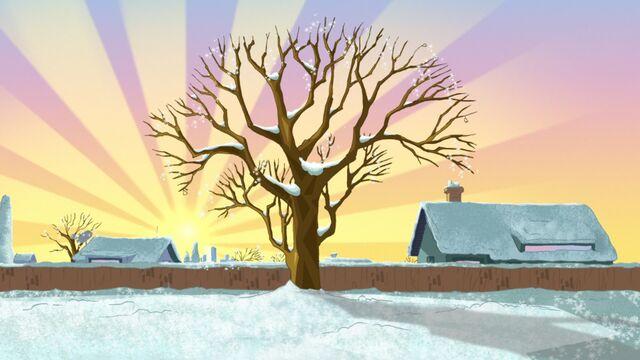File:Winter Tree.jpg