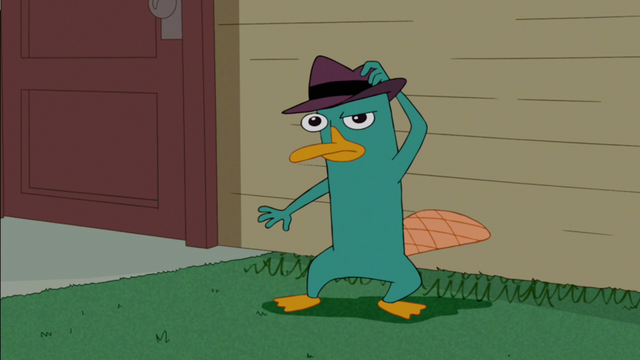 File:Perry doesn't like Candaces rants.png
