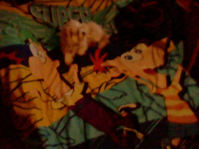 File:PnF Blanket 2.JPG
