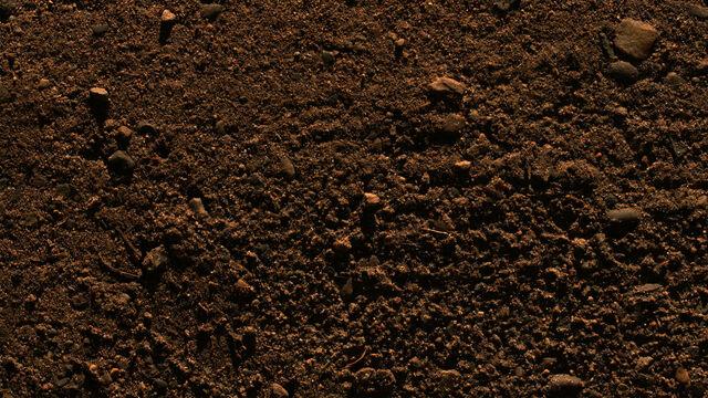 File:Dirt.jpg