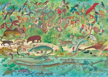 Rainforest Animals Illustration