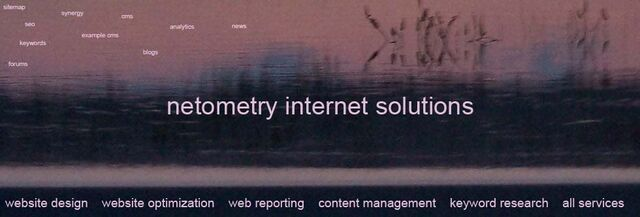 File:Netometry-internet-solutions-front-page.jpg