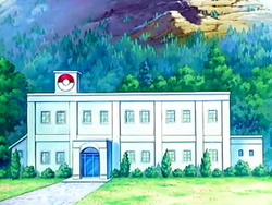 Aster Town Gym