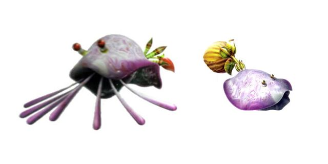 File:Molluskings.jpg