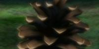Conifer Spire