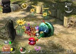 File:Fallen Creeping Crysanthemum.jpg
