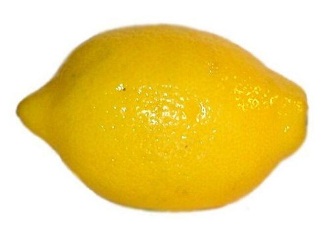 File:Lemon (1).jpg