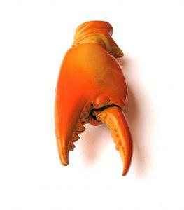 File:872269 crab claw lighter.jpg