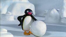 PinguandtheSnowball
