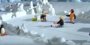 Penguins Playing Hockey
