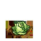 File:Farm-cabbage-ripe.png