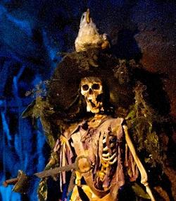 Pirate Captain Skeleton