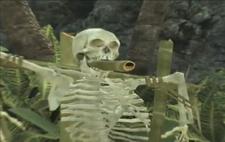Skeleton AWE game