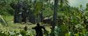 Isla Cruces duel 5
