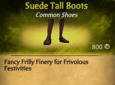 F Suede Tall Boots