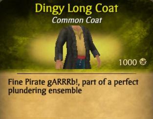 File:Dingy Long Coat.jpg