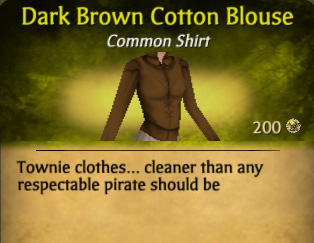 File:Dark Brown Cotton Blouse.jpg