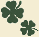File:Clovers-two.jpg