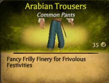 Arabian Trousers