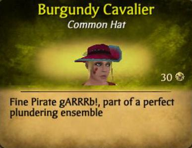File:Burgandy Cavalier.jpg