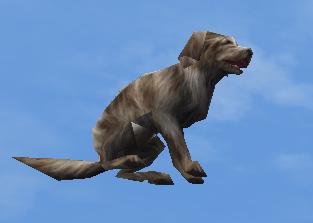 File:Secret Dog.jpg