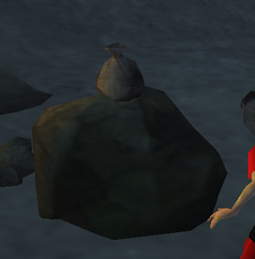 File:Pouch on a rock.PNG