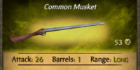Sailor's Musket