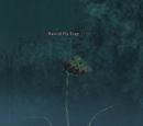 Rancid Fly Trap