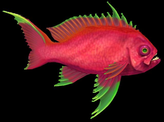 File:Fish 12.png