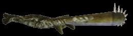 File:260px-DavyJones H.png