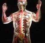 SkeletonSmallFry
