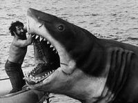 Jaws-bruce