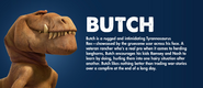 Butch profile