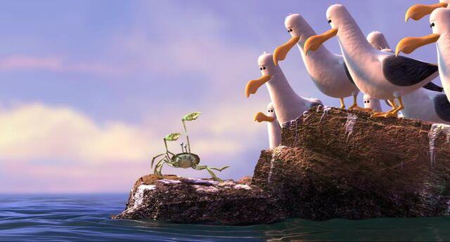 File:Crab-Seagulls.jpg
