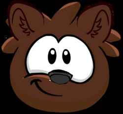 Bear cub fixed