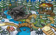 Puffle Party 2015 Forest