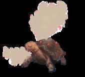 Torkoal Realistico