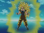 Goku SSJ Three (23)
